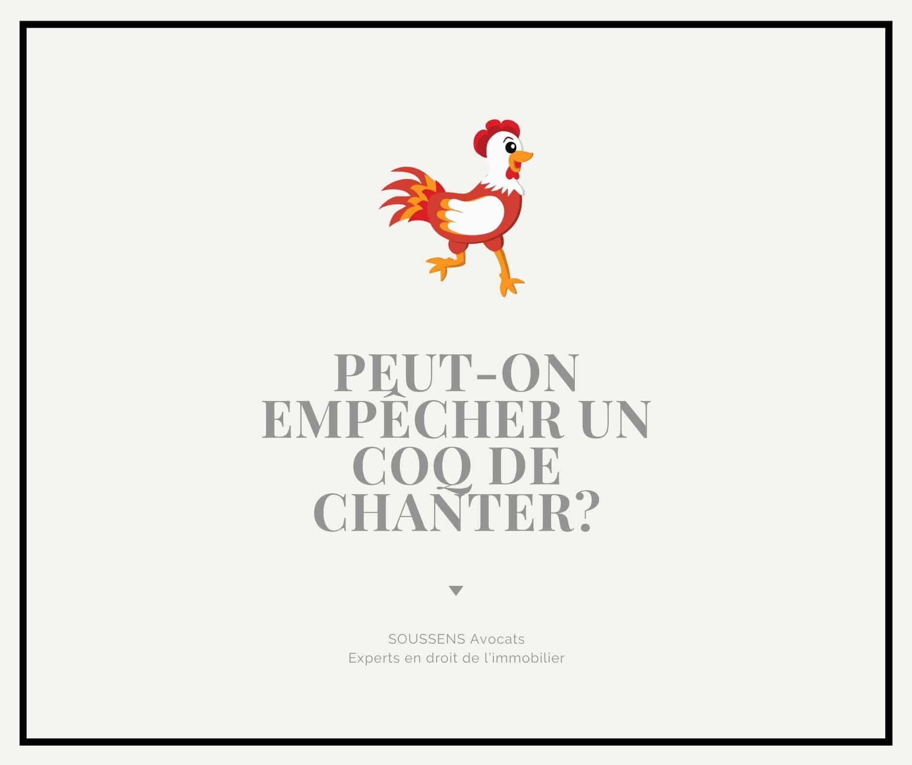 Read more about the article Peut-on empêcher un coq de chanter ?