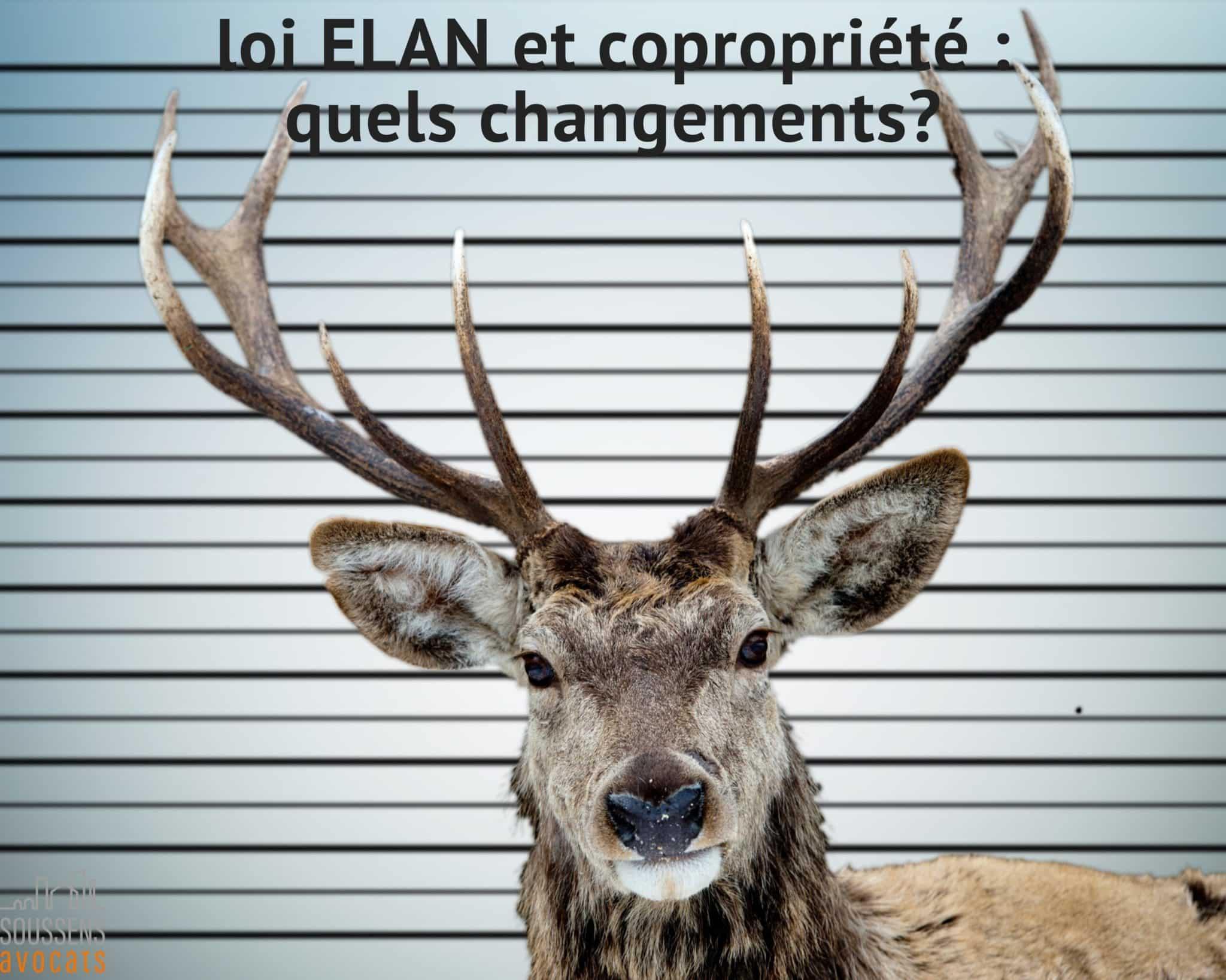 Read more about the article Loi ELAN et copropriété : quels changements?